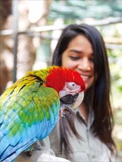 카젤라 파크에서는 다양한 동물과 가까이서 호흡할 수 있다.