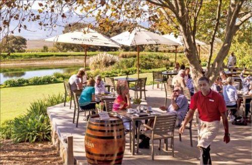 남아공 와인을 맛볼 수 있는 와이너리