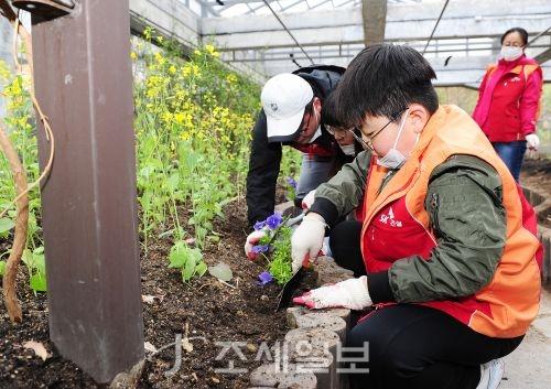지난 14일 서울 성동구 서울숲에서 숲가꾸기 봉사활동에 참여한 SK건설 임직원 가족봉사단이 화단에 꽃을 심고 있다. 사진=SK건설 제공