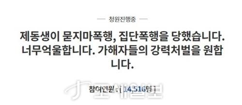 순천 집단폭행 <사진: 청와대 홈페이지>