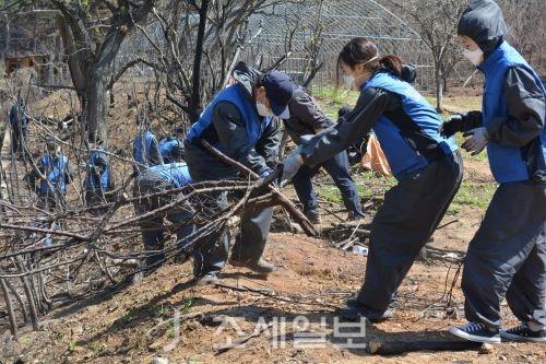 법무법인 태평양과 재단법인 동천이 지난 20일 강릉시 옥계면의 산불피해 지역을 방문해 복구지원 활동을 펼쳤다.