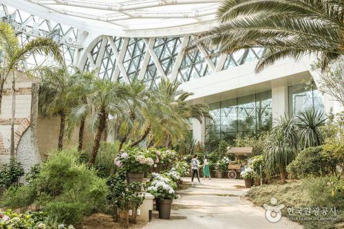 서울식물원 열대관