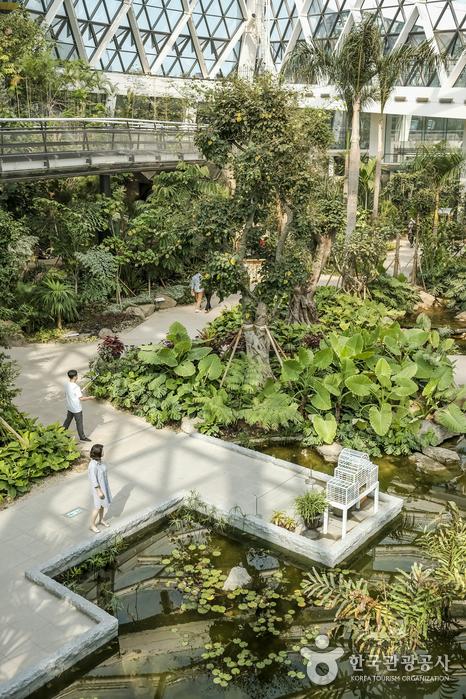 나들이 코스로 좋은 서울식물원