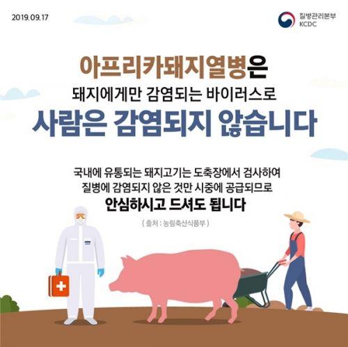 아프리카돼지열병 <사진: 농림축산식품부>