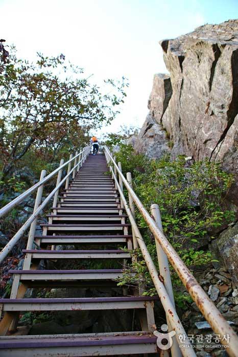 철제 계단을 지나면 탁 트인 풍경이 나타난다